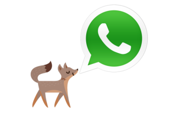 facebook-whatsapp-fox