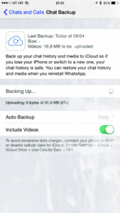 Детальнее о чатах WhatsApp