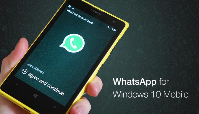 Обновлен WhatsApp для Windows